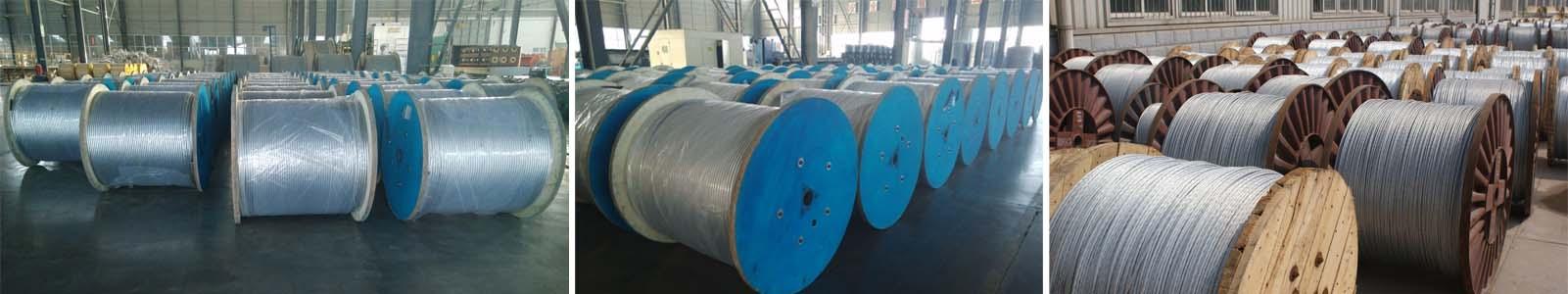 zebra conductor cable plant